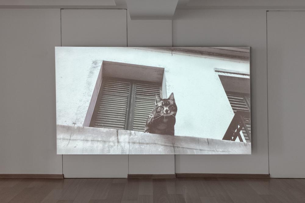 Exhibitions \ Tinos Quarry Platform